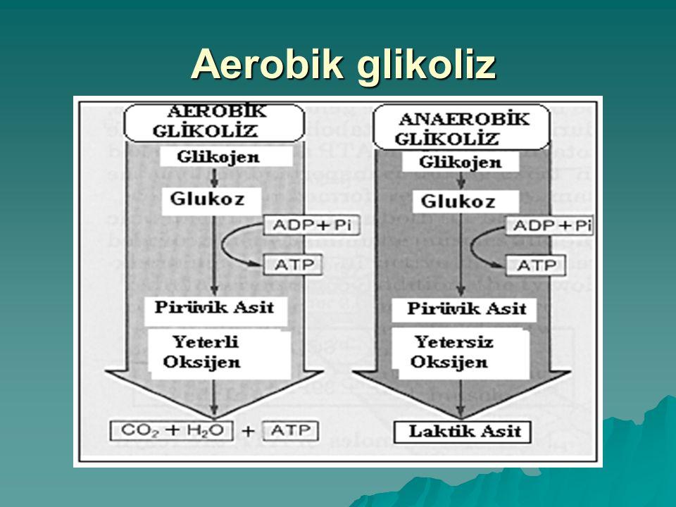 Aerobik glikoliz