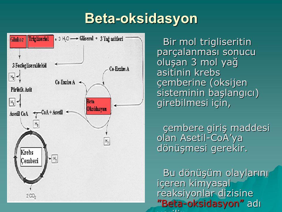 Beta-oksidasyon Bir mol trigliseritin parçalanması sonucu oluşan 3 mol yağ asitinin krebs çemberine (oksijen sisteminin başlangıcı) girebilmesi için,
