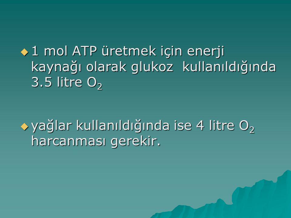 1 mol ATP üretmek için enerji kaynağı olarak glukoz kullanıldığında 3