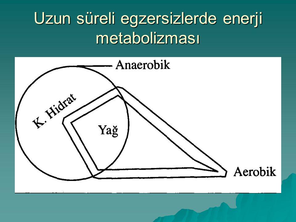 Uzun süreli egzersizlerde enerji metabolizması
