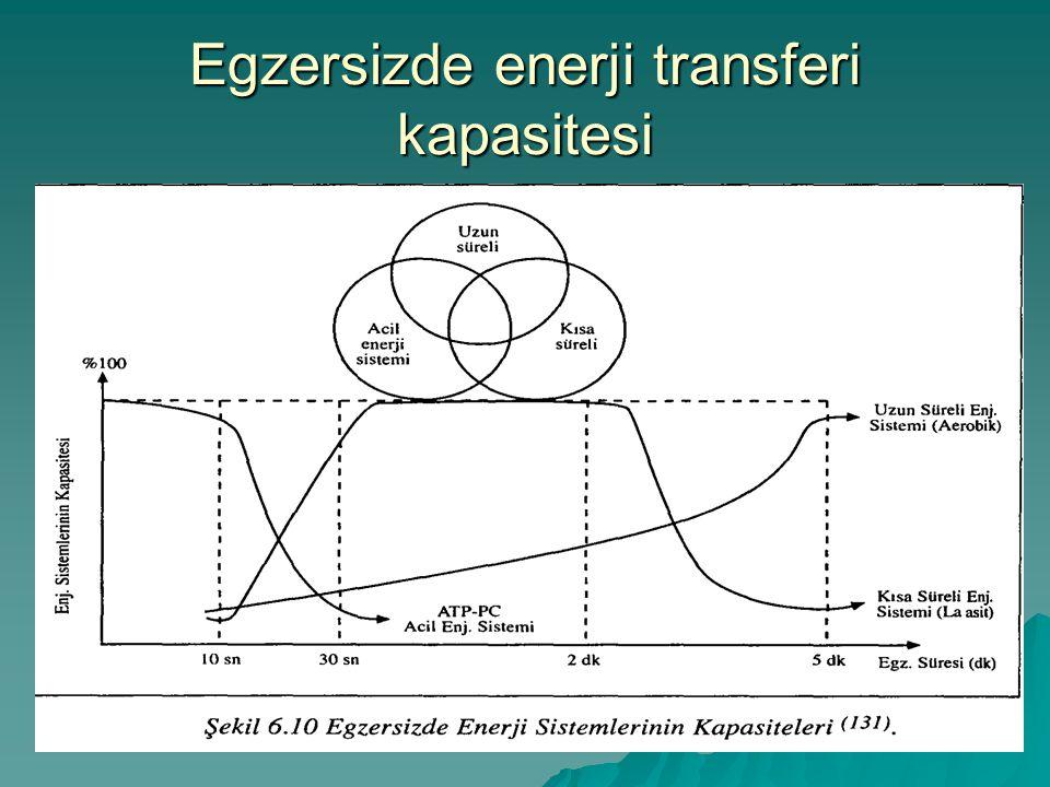 Egzersizde enerji transferi kapasitesi