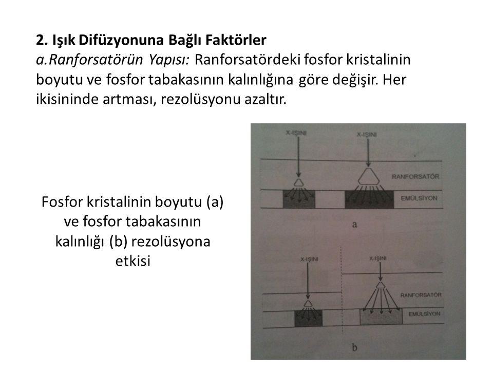 2. Işık Difüzyonuna Bağlı Faktörler