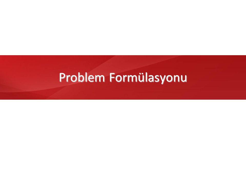 Problem Formülasyonu