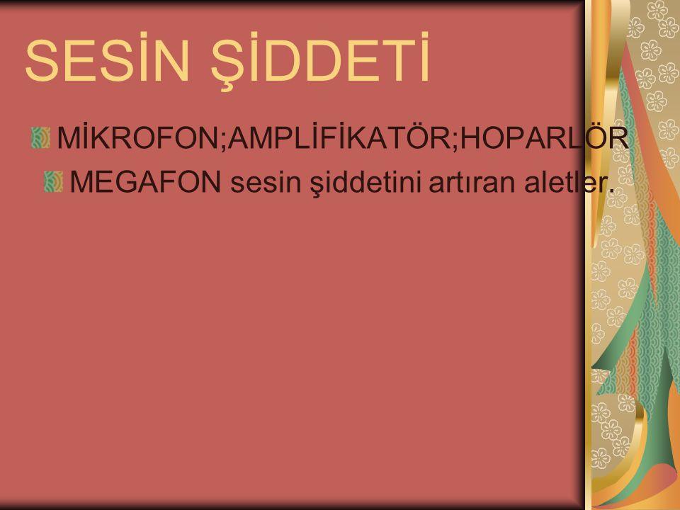 SESİN ŞİDDETİ MİKROFON;AMPLİFİKATÖR;HOPARLÖR