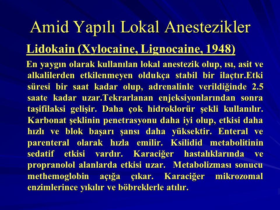 Amid Yapılı Lokal Anestezikler