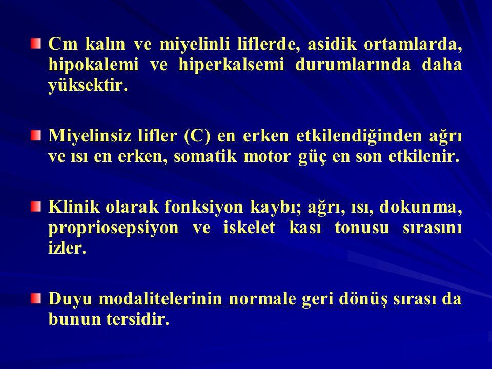 Cm kalın ve miyelinli liflerde, asidik ortamlarda, hipokalemi ve hiperkalsemi durumlarında daha yüksektir.