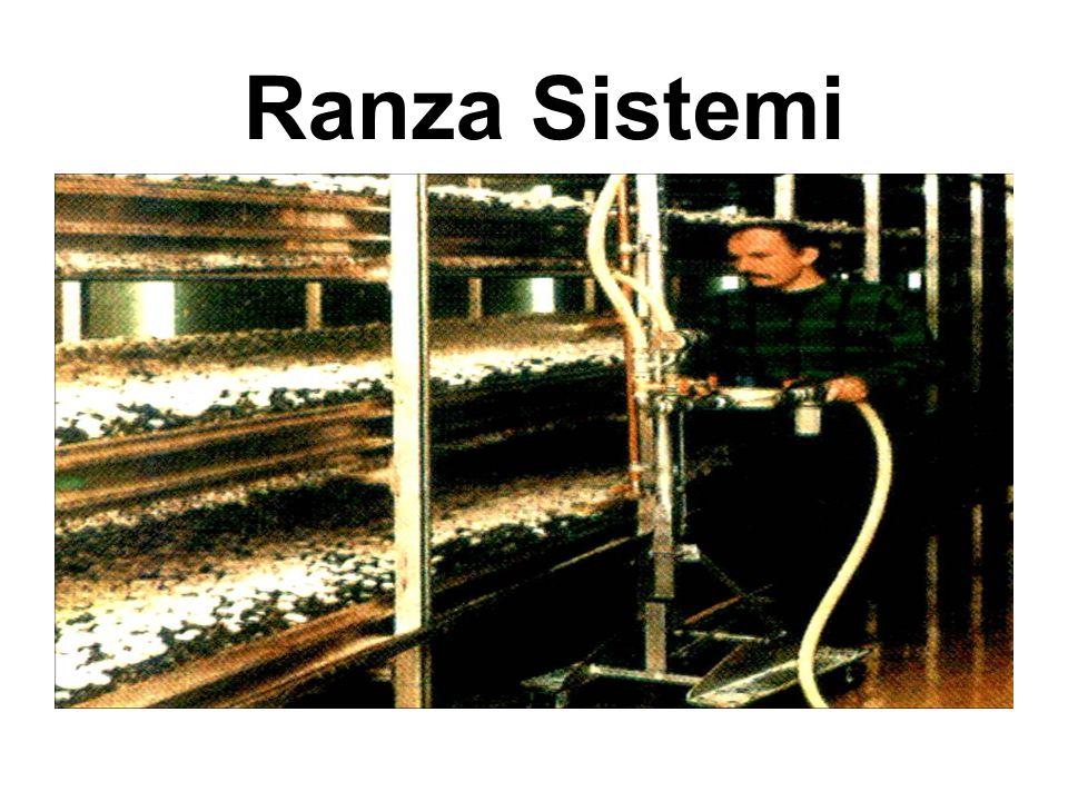 Ranza Sistemi