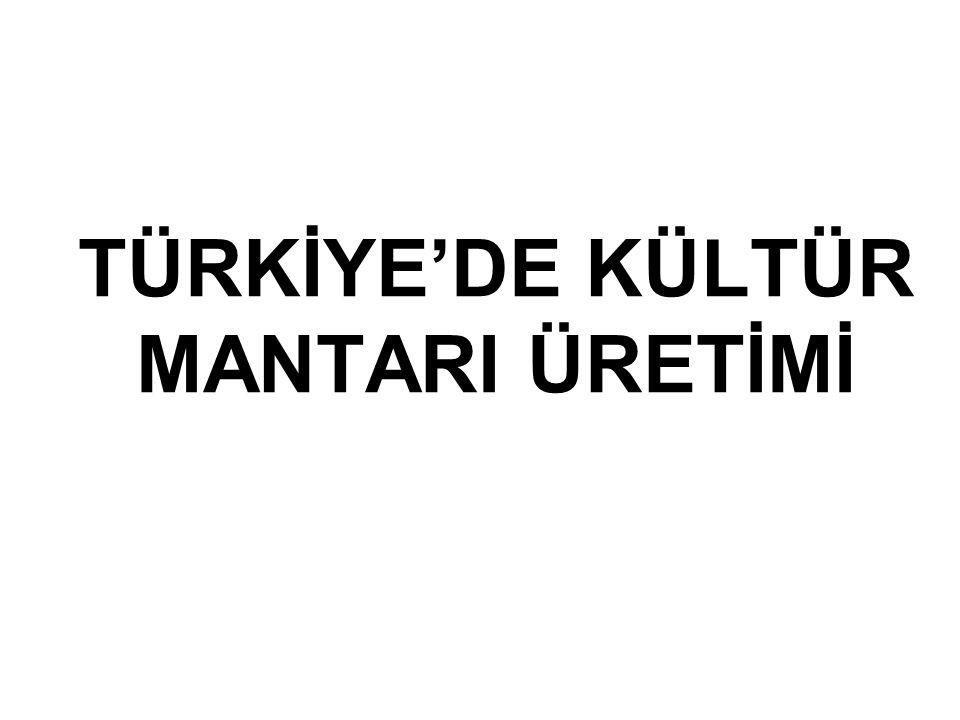 TÜRKİYE'DE KÜLTÜR MANTARI ÜRETİMİ