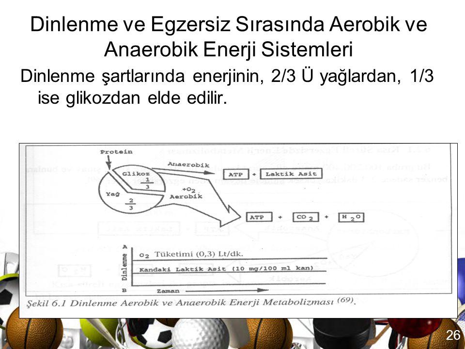 Dinlenme ve Egzersiz Sırasında Aerobik ve Anaerobik Enerji Sistemleri