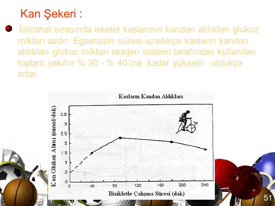 Kan Şekeri :