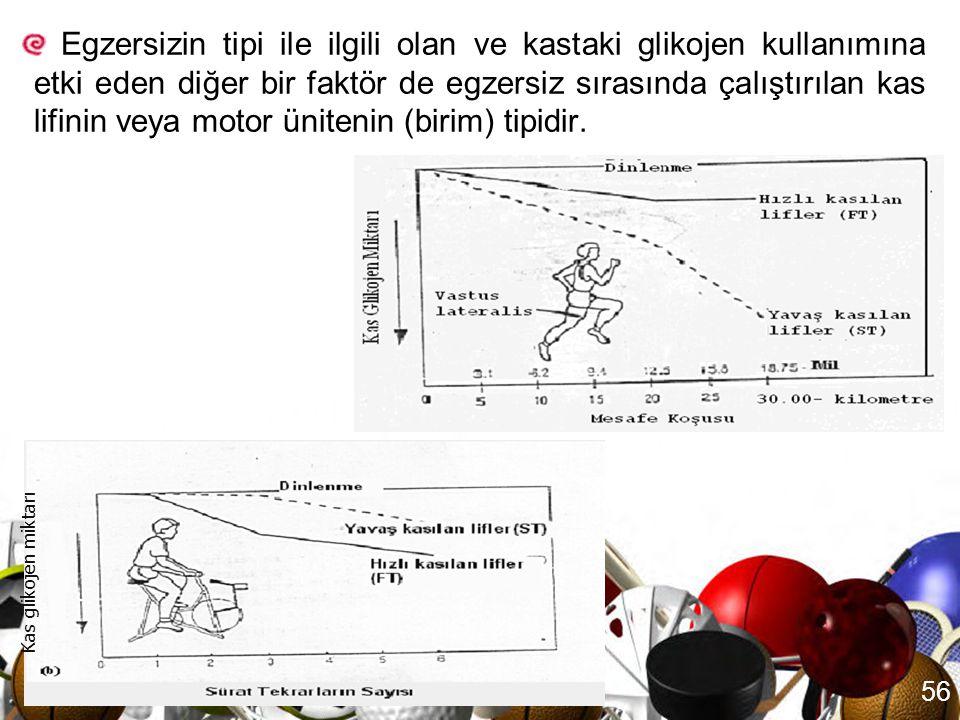 Egzersizin tipi ile ilgili olan ve kastaki glikojen kullanımına etki eden diğer bir faktör de egzersiz sırasında çalıştırılan kas lifinin veya motor ünitenin (birim) tipidir.