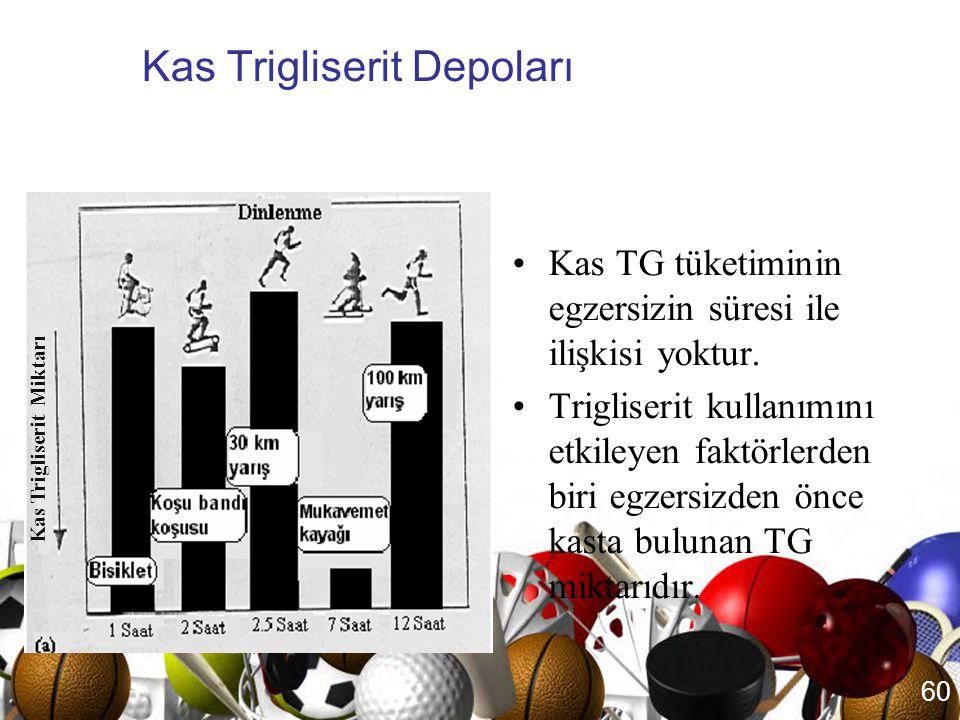 Kas Trigliserit Depoları