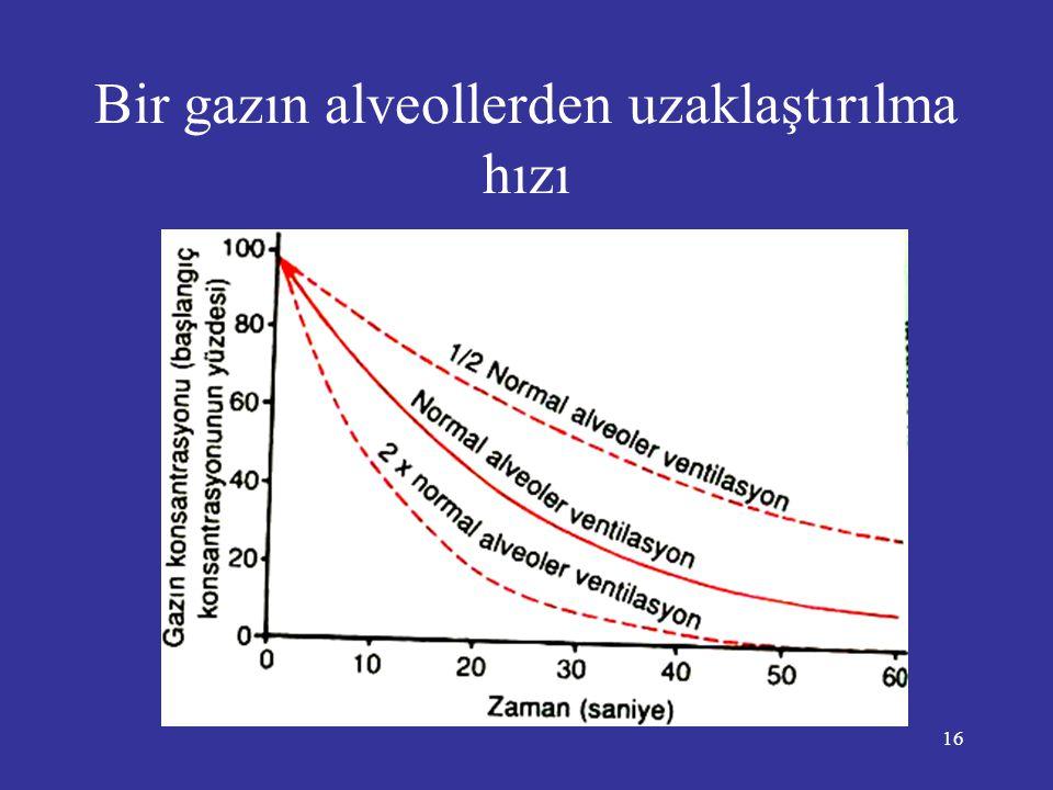 Bir gazın alveollerden uzaklaştırılma hızı