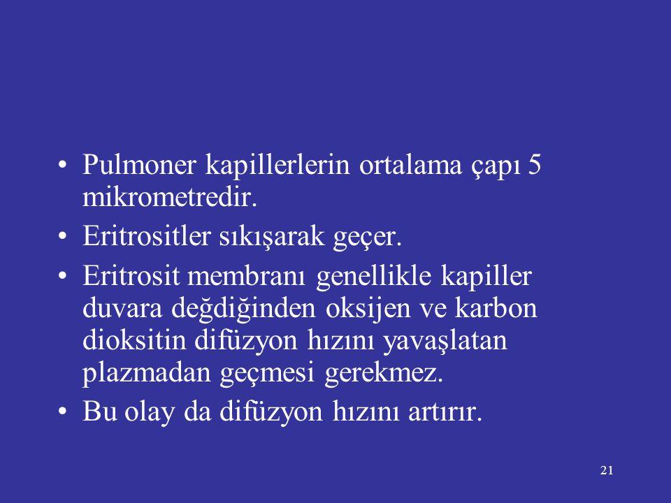 Pulmoner kapillerlerin ortalama çapı 5 mikrometredir.