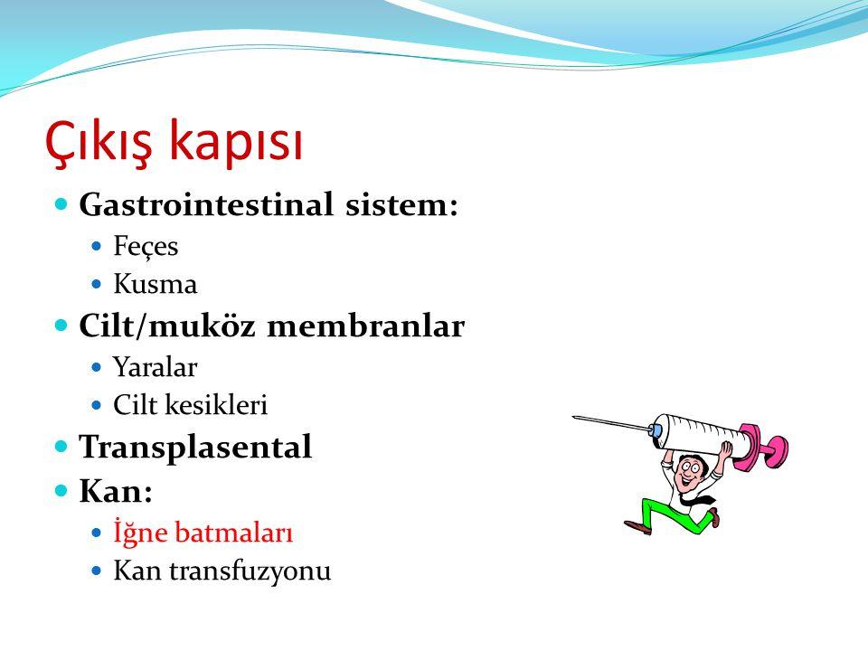 Çıkış kapısı Gastrointestinal sistem: Cilt/muköz membranlar