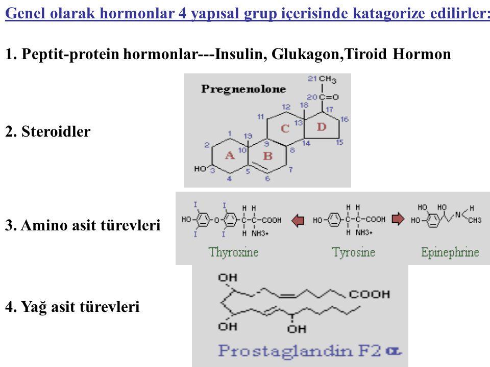 Genel olarak hormonlar 4 yapısal grup içerisinde katagorize edilirler: