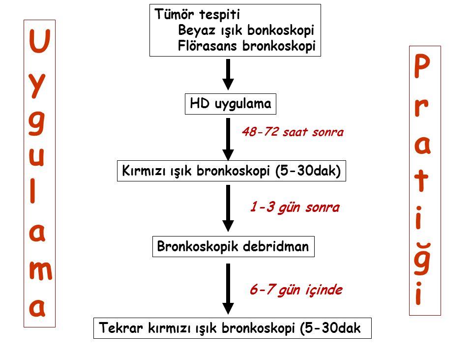 Uygulama Pratiği Tümör tespiti Beyaz ışık bonkoskopi