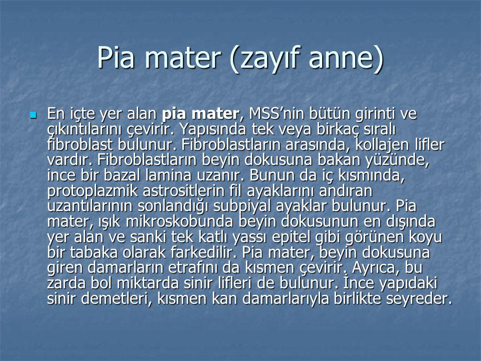 Pia mater (zayıf anne)