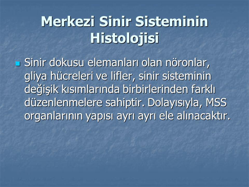 Merkezi Sinir Sisteminin Histolojisi