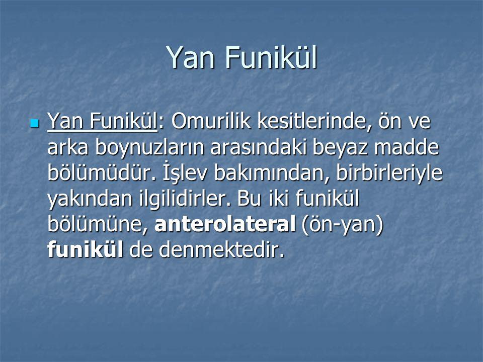 Yan Funikül