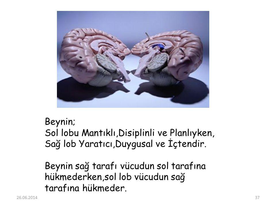 Beynin; Sol lobu Mantıklı,Disiplinli ve Planlıyken, Sağ lob Yaratıcı,Duygusal ve İçtendir. Beynin sağ tarafı vücudun sol tarafına hükmederken,sol lob vücudun sağ tarafına hükmeder.