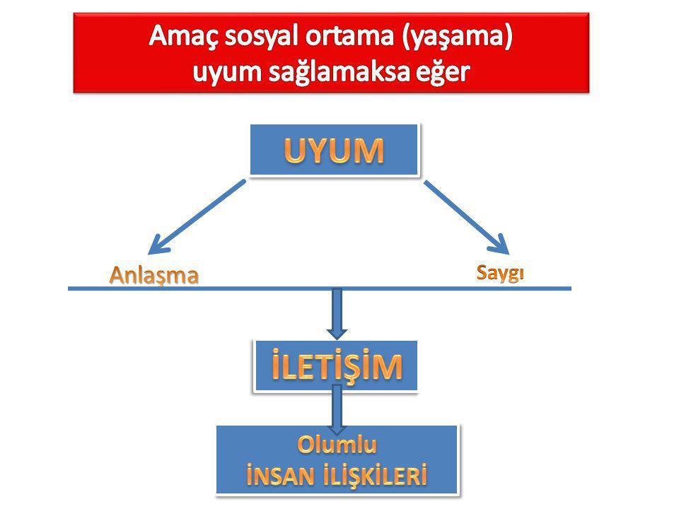 Amaç sosyal ortama (yaşama)