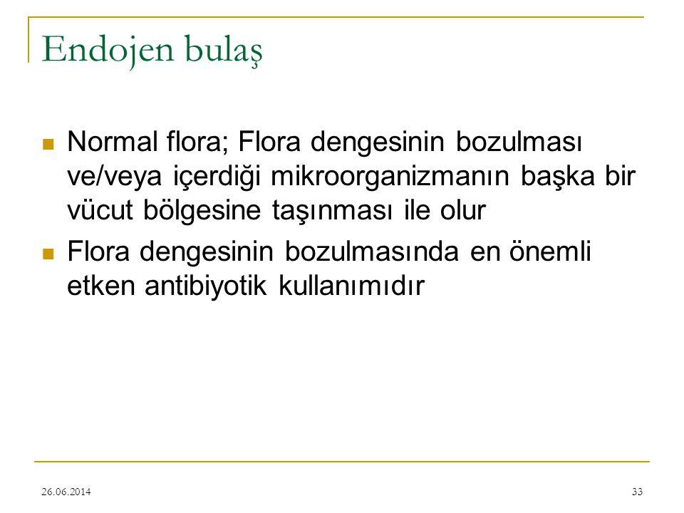 Endojen bulaş Normal flora; Flora dengesinin bozulması ve/veya içerdiği mikroorganizmanın başka bir vücut bölgesine taşınması ile olur.