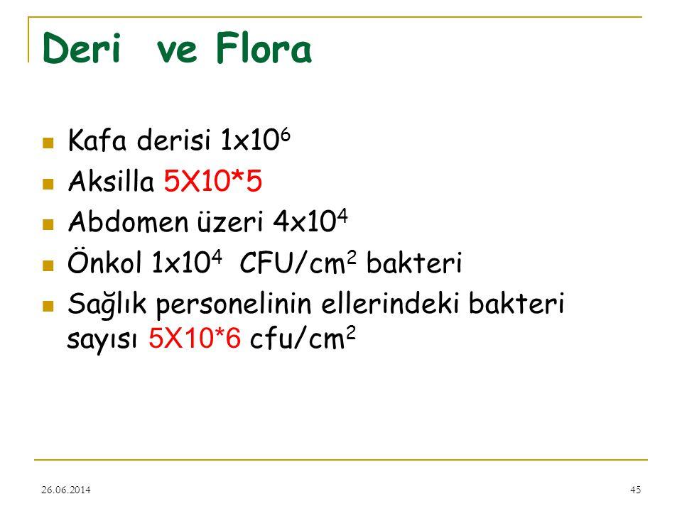 Deri ve Flora Kafa derisi 1x106 Aksilla 5X10*5 Abdomen üzeri 4x104