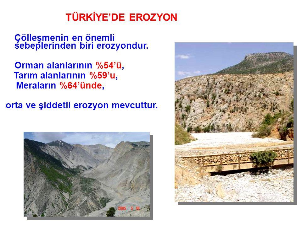 TÜRKİYE'DE EROZYON Genel Durum