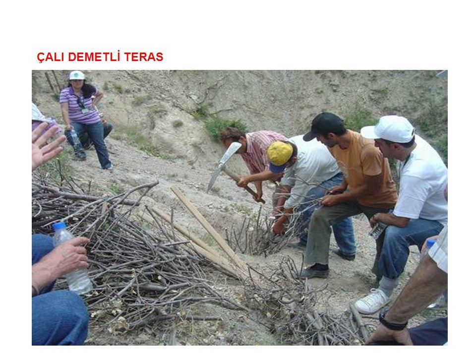 ÇALI DEMETLİ TERAS