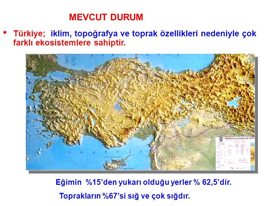 MEVCUT DURUM Genel Durum