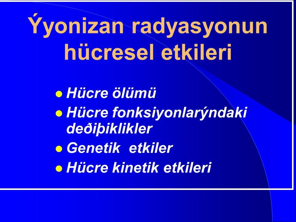 Ýyonizan radyasyonun hücresel etkileri