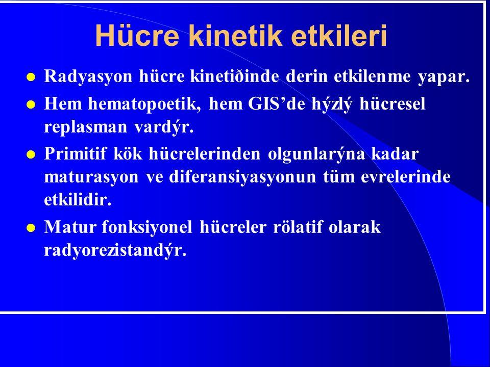 Hücre kinetik etkileri