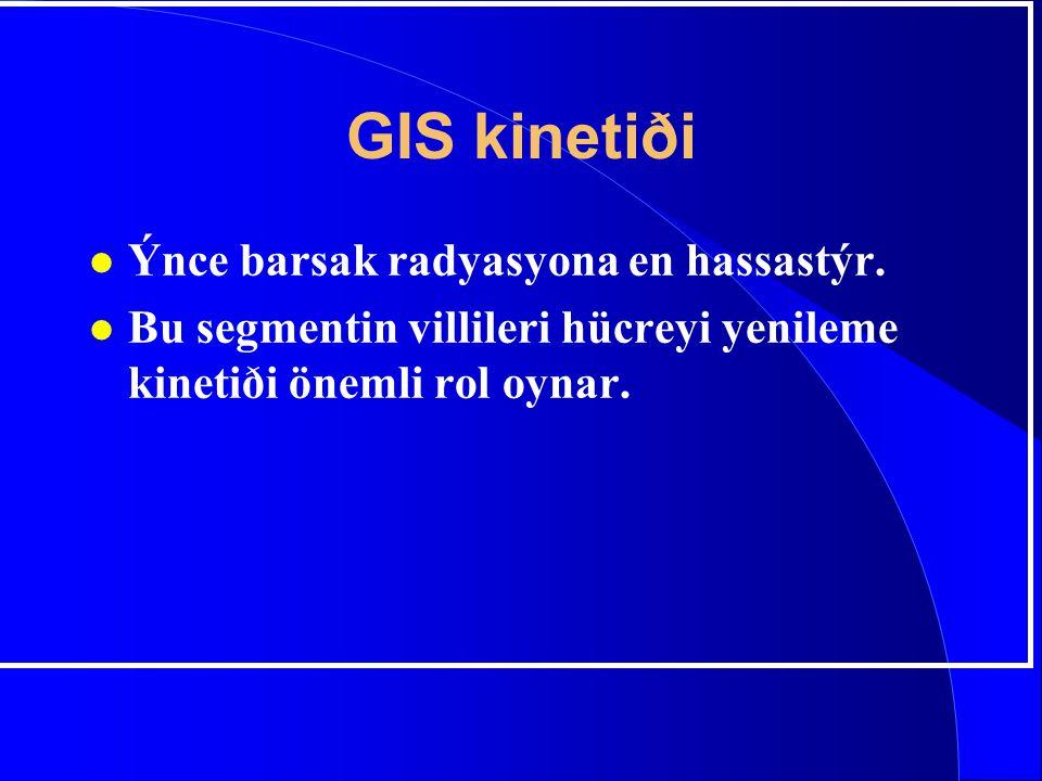 GIS kinetiði Ýnce barsak radyasyona en hassastýr.