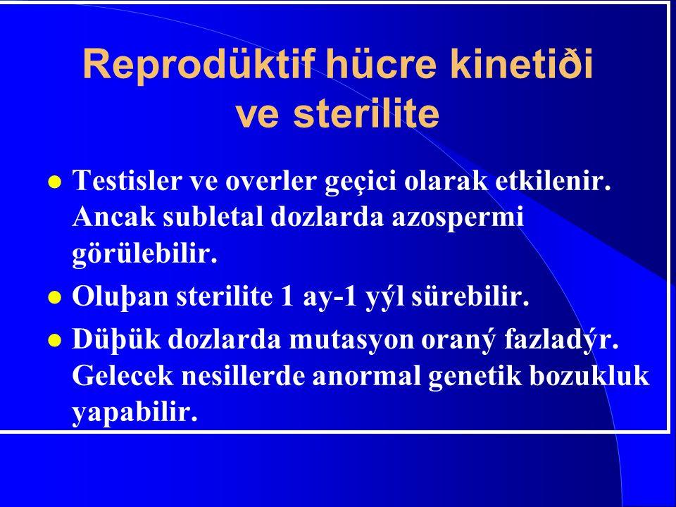 Reprodüktif hücre kinetiði ve sterilite