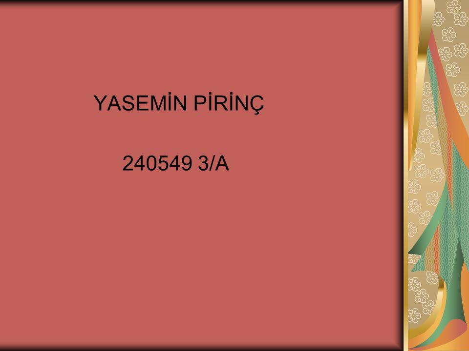 YASEMİN PİRİNÇ 240549 3/A