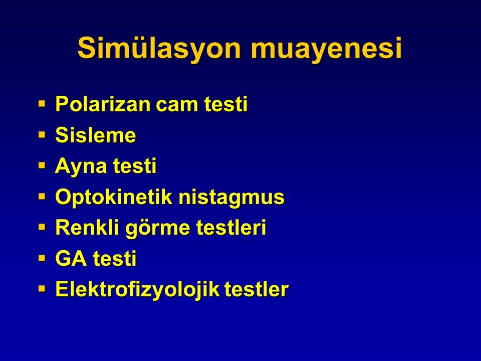 Simülasyon muayenesi Polarizan cam testi Sisleme Ayna testi