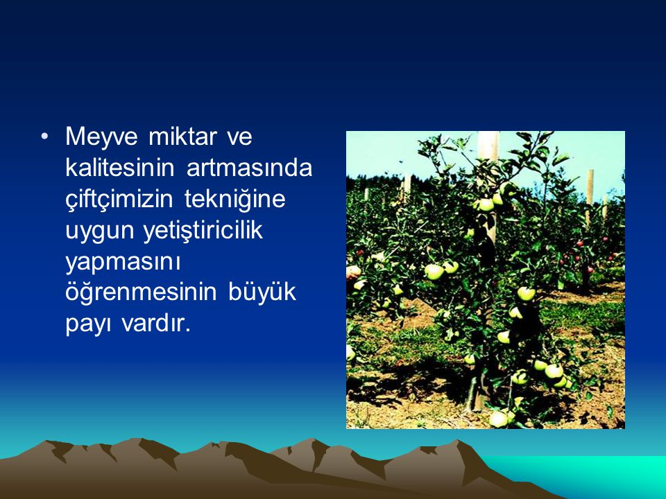 Meyve miktar ve kalitesinin artmasında çiftçimizin tekniğine uygun yetiştiricilik yapmasını öğrenmesinin büyük payı vardır.