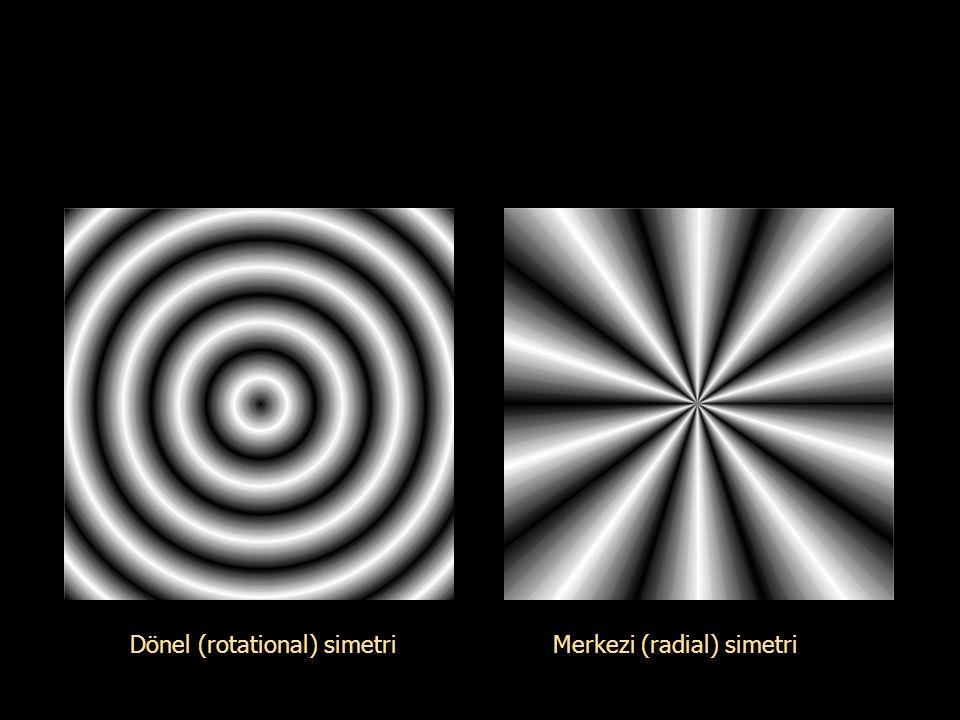 Dönel (rotational) simetri Merkezi (radial) simetri