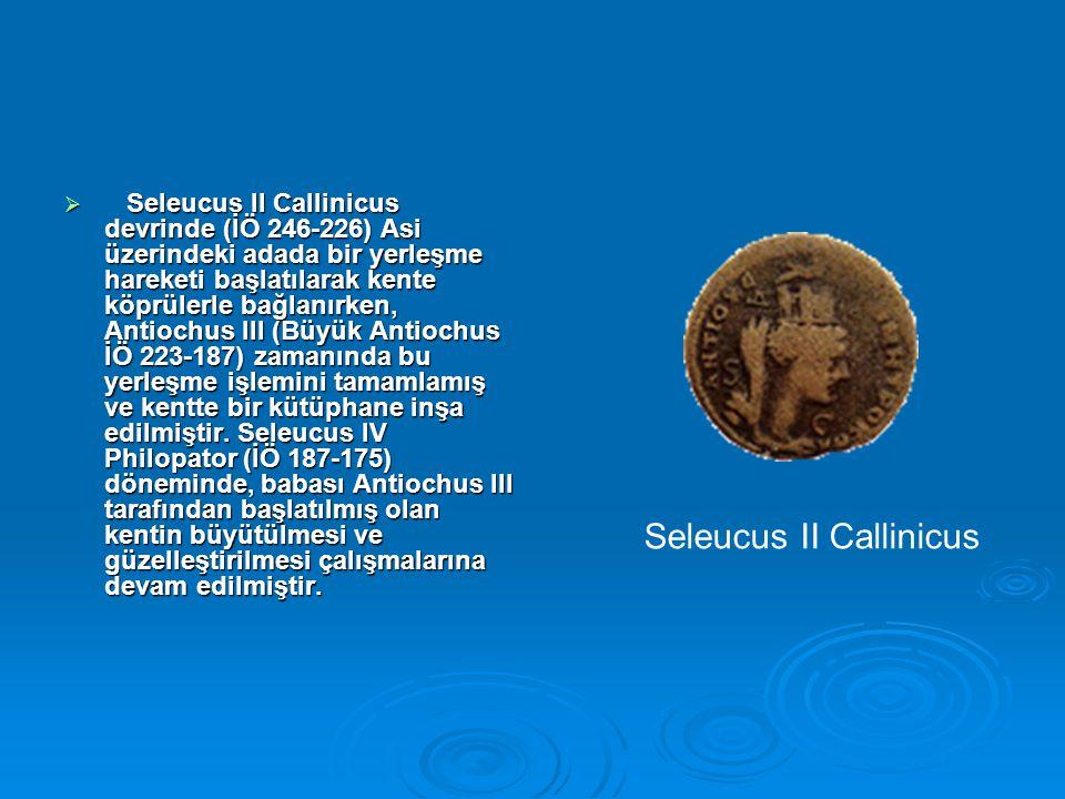 Seleucus II Callinicus