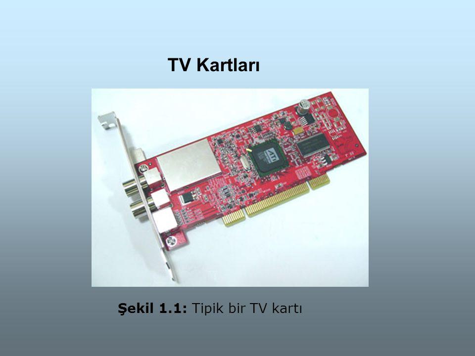 Şekil 1.1: Tipik bir TV kartı