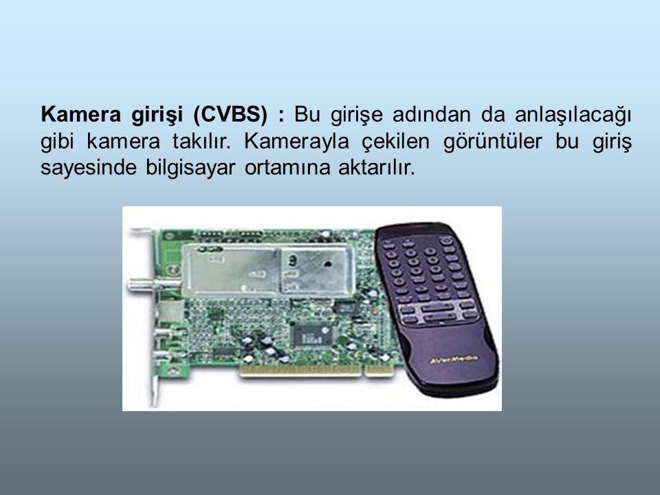 Kamera girişi (CVBS) : Bu girişe adından da anlaşılacağı gibi kamera takılır.