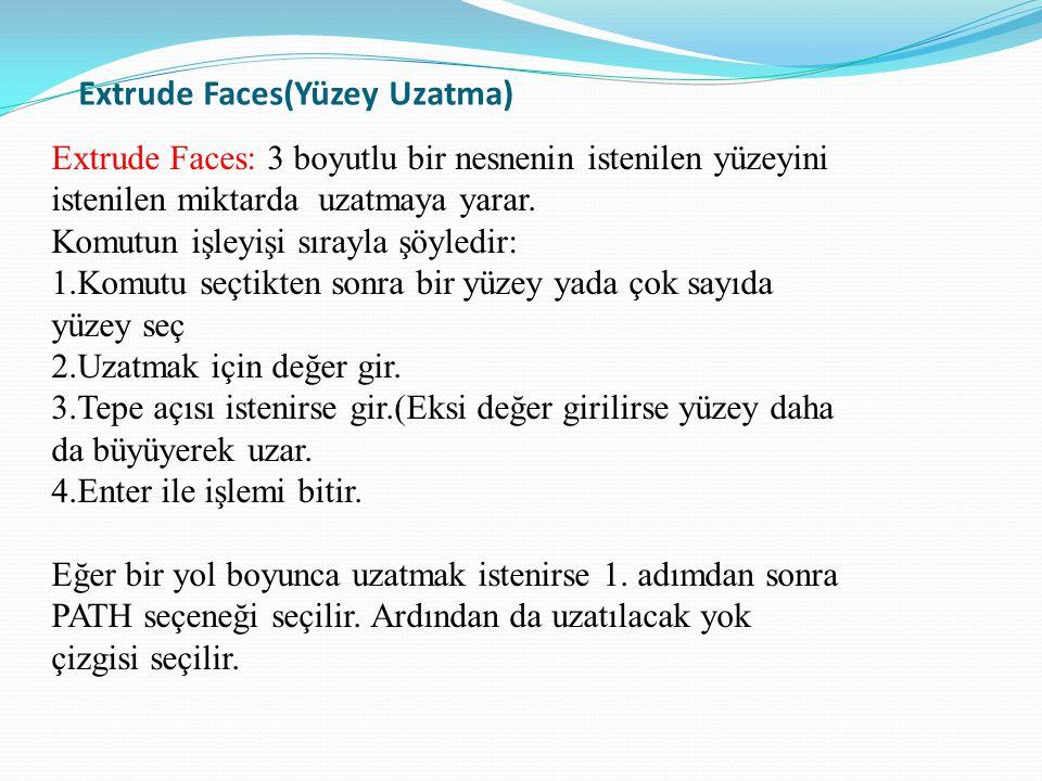 Extrude Faces(Yüzey Uzatma)