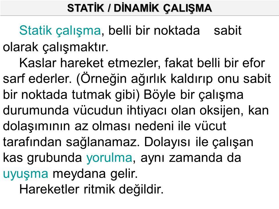 STATİK / DİNAMİK ÇALIŞMA