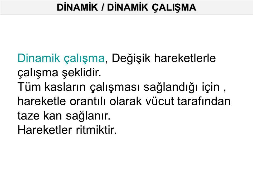 DİNAMİK / DİNAMİK ÇALIŞMA