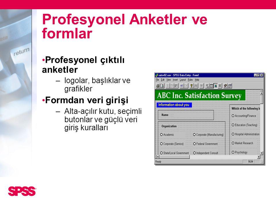 Profesyonel Anketler ve formlar