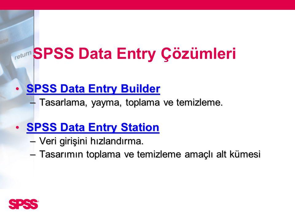 SPSS Data Entry Çözümleri