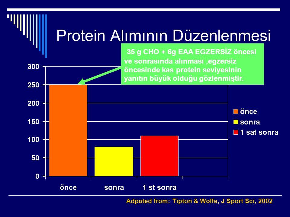 Protein Alımının Düzenlenmesi