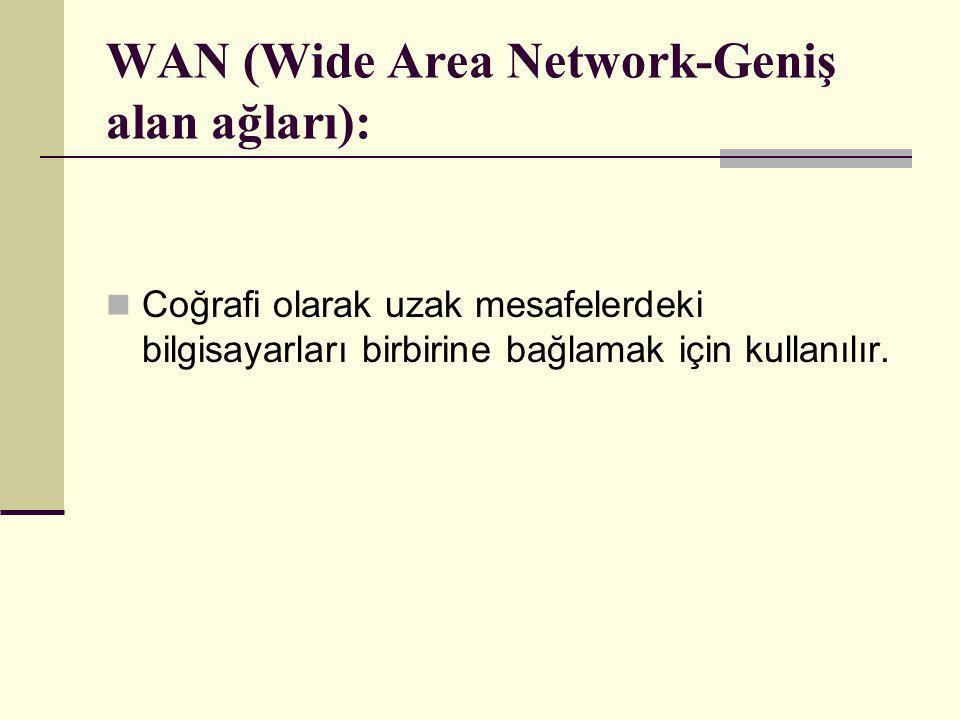 WAN (Wide Area Network-Geniş alan ağları):