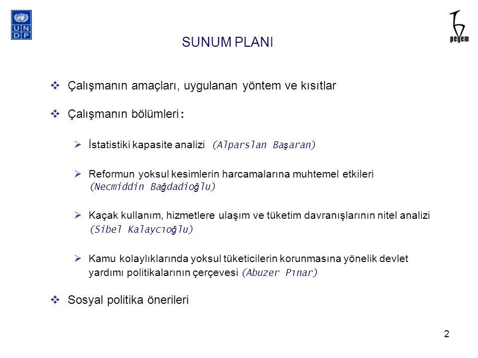 SUNUM PLANI Çalışmanın amaçları, uygulanan yöntem ve kısıtlar